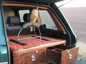 Falconry 003